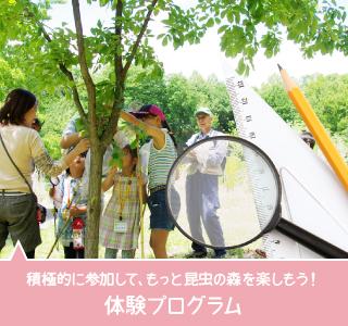 積極的に参加して、もっと昆虫の森を楽しもう!体験プログラム