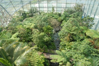 Greenhouse(Semi-tropical Insectarium)