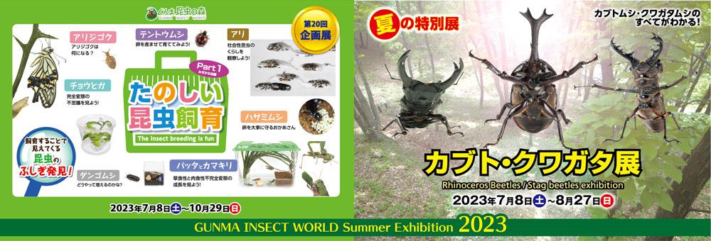 セミたちの夏・カブト・クワガタ展